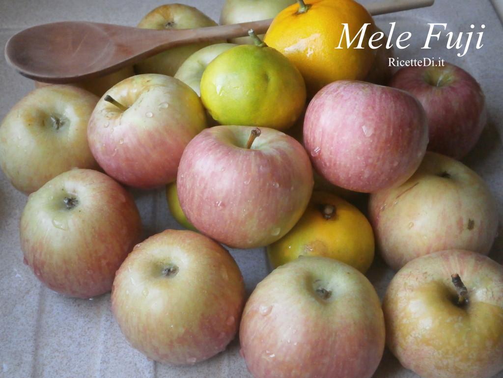 Marmellata di mele - Mele fuji coltivazione ...