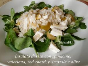 insalata_di_riso_con_olive_e_primosale_01