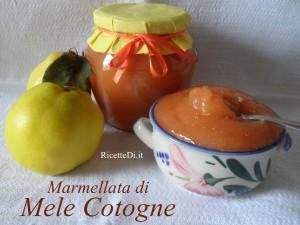 marmellata_di_mele_cotogne_09