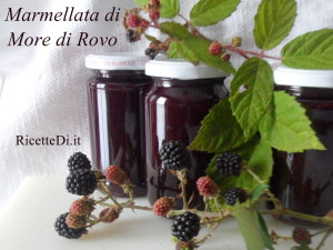 09_marmellata_di_more_di_rovo